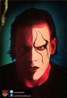 Sting aka Steve Borden