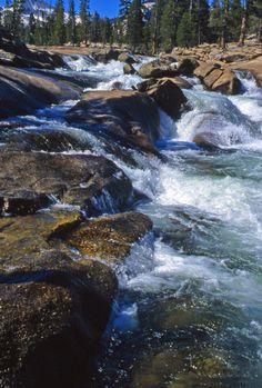 This photo from California, West is titled 'Tuolumne River Cascades'. Yosemite National Park, National Parks, Places To Travel, Places To See, Tuolumne Meadows, Nevada Mountains, Whitewater Rafting, California Dreamin', Sierra Nevada