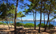 Plagemed | Var | Côte d'Azur | Provence | France - La Pointe des Sardinaux