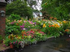 """""""Hannaford works on the garden full time, spending 40 to 60 hours a week working in her garden from May to August."""" [garden of Joyce Ahlgren Hannaford in Natick, MA]"""