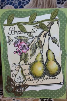 Watercolor pear card Hand Stamped Cards, Watercolor Cards, Swings, Tattoo Inspiration, Pear, Trees, Throw Pillows, Fish, Toss Pillows