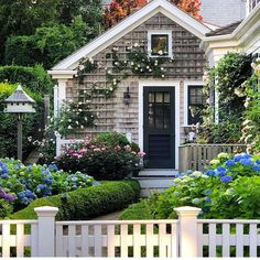 Summer cottage charm 🌸 via ・・・ What a difference climbing roses, hydrangeas, boxwoods & a picket fence can make to tiny shingle style cottage! Nantucket Cottage, Cape Cod Cottage, Beach Cottage Style, Beach Cottage Decor, Cozy Cottage, Coastal Cottage, Coastal Homes, Cottage Homes, Beach House