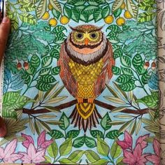 Coloring Books For Adults This Is Too Amazing Secret Garden