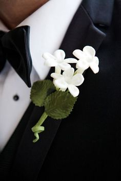 stephanotis wedding flower boutonniere with pearl centers