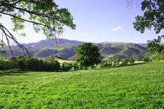 Bellver de Cerdanya #nature