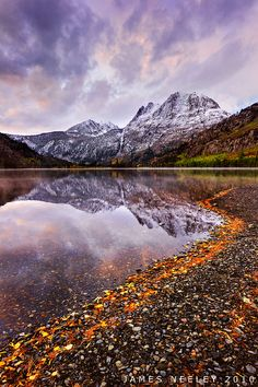 Composing at Silver Lake by James Neeley