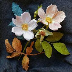 Mildly wild things. Rose paper flowers