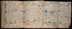 Spanish publisher to release copies of Voynich Manuscript, a book no living person can understand - The Washington Post