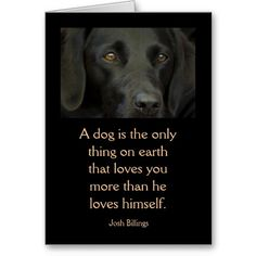 Card with Quote - Black Labrador Dog from Zazzle.com