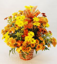 Beautiful crisp fresh Fall daisies overflow out of this eight-inch handled basket designed all around and accented with a coordinating sheer ribbon.   	Available for Same Day Local Delivery  	Purchase at any Norfolk Florist location 	Also...