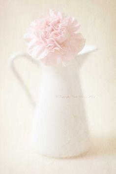 prestonchick | Softly Pastel