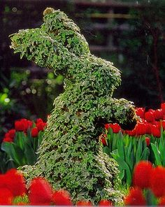 Rabbit topiary to sit in the garden