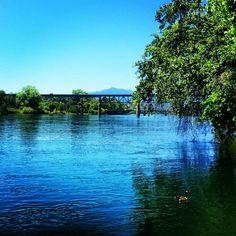 Sacramento River, Redding, Shasta, California by jenneemaree