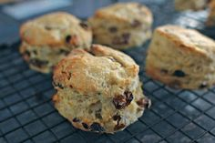 mamacook: No added sugar scones for babies and toddlers (and grown ups)