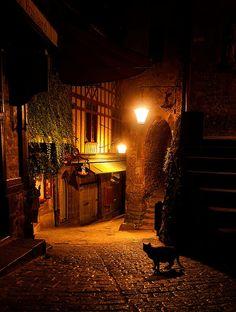 bluepueblo:  Alley Cat, Mont St Michel, France photo via magicalnaturetour