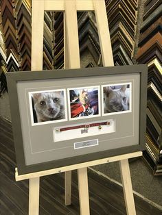 They are part of the family and this is a lovely idea to always keep them close. #customframing #shadowbox #taupeframe   For more information please visit www.eraframes.com