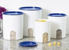 Our chic canister set doesn't just sit on the counter looking pretty. The special viewing window in the front reminds you when contents are running low. One Touch® seal comes on and off with the lightest touch, yet seals both air and liquid tight! Seals available in your choice of Brilliant Blue, Passion, and Black.