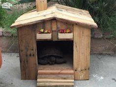 Nice Tortoise House & Garden Side Table I just needed a side table for my backyard and somewhere for my tortoise to sleep. So I made these two styles from repurposed wooden pallets. Tortoise House, Tortoise Habitat, Tortoise Care, Tortoise Turtle, 1001 Palettes, Tortoise Enclosure, Turtle Enclosure, Garden Side Table, Decoration Palette