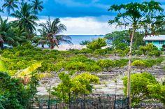 Jardin (d'Eden !) à la ferme perlière de Fakarava