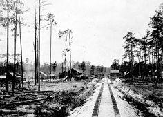 Sawmill on Florida Railway line 1910's