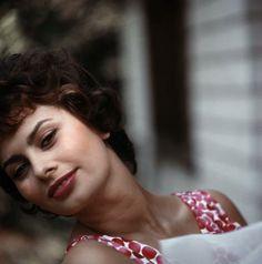 ritratro di Sophia Loren