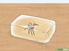 How to Make 'Melt and Pour' Soap. Melt and pour soap is the easiest method of making homemade soap. Because the soap base has already been made and prepared for you, you do not have to worry about working with lye, like you would with cold. Tea Tree Oil Soap, Soap Base, Home Made Soap, Soap Making, Homemade, Pictures, Make Soap, Homemade Dish Soap, Photos
