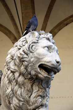 Medici Lion, Florence, Italy