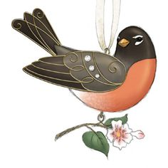 The Beauty of Birds Series: American Robin