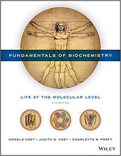 Test bank for organic and biochemistry for today 8th edition by test bank and solution manual for fundamentals of biochemistry life at the molecular level 5th edition fandeluxe Choice Image