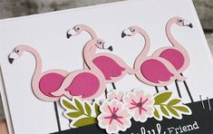 Patterned Paper : MFTWSC 282, Flamingos