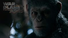 El estreno de verano, War of the Planet of the Apes es el tercer y culminante capítulo de la aclamada y taquillera trilogía de The Planet Of the Apes - http://j.mp/2ugbF5j