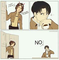 Hanji: ¿Rivaille? ¿Eres tu? ¿Has visto mis gafas? Levi-the-fking-pro: NO