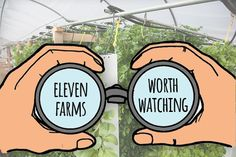 The use of live sales to reduce labor costs and benefit local farms is a reality. Learn how these farmers are using vertical farming to transform the food industry by being farms worth watching.