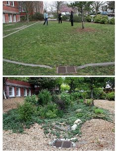 BF Day Elementary School before and after rain garden year later)