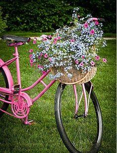 Bicicleta y flores rosa❤❤
