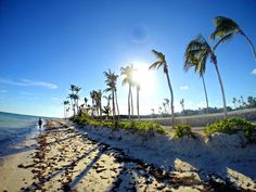 The right times to buy flights to Asia, South America, Europe and Africa differ dramatically. Punta Cana, Honeymoon Places, All Inclusive Resorts, Turks And Caicos, Travel News, Dominican Republic, Luxury Travel, Beautiful Beaches, Day Trips