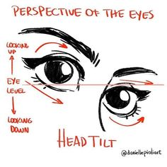 Quick Tip Monday - Perspective of the eyes on a tilted head. Think about the eye level of the viewer. For weekly tips, SIGN UP: daniellepioli.com #qtm #quicktipmonday #arttips