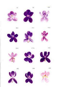 Different types of violet violet flower tattoos, name flower tattoo, violet tattoo, birth Violet Flower Tattoos, Name Flower Tattoo, Violet Tattoo, Flower Tattoo Designs, Tattoo Flowers, Pansy Tattoo, Iris Tattoo, February Birth Flowers, Birth Month Flowers