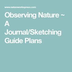 Observing Nature ~ A Journal/Sketching Guide Plans
