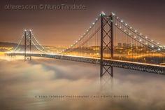 A ponte na bruma  #Photo  by Nuno Trindade