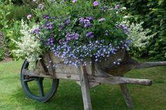 wheelbarrow full of flowers! My grandpa's wheelbarrow :) Container Plants, Container Gardening, Dream Garden, Garden Art, Garden Junk, Wheelbarrow Planter, Wagon Planter, Barrel Planter, Flower Cart