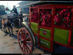 James Stanfield 2001, Aster Wagon, Burma, Myanmar