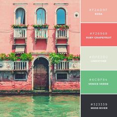 Very Venice. Made up of warm and fruity tones, this palette is a contemporary choice. All colors contrast well against one another to make for easy text on background application. A zesty combination to portray fruit and vegetables. Colour Pallette, Color Palate, Colour Schemes, Color Combos, Color Patterns, Green Palette, Beautiful Color Combinations, Swatch, Pantone