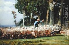 sheep flock images - Google Search