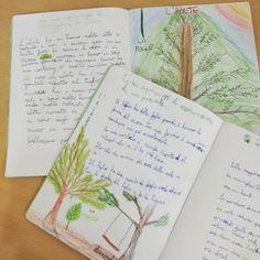 osservazioni di una pianta  #botanica in #quintaclasse