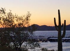 Sunset at Lake Pleasant in Peoria Arizona with Saguaro Cactus and Pleasant Harbor Marina