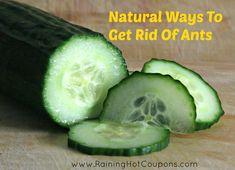Natural Ways To Get Rid Of Ants *Get more FRUGAL Articles, tips and tricksfrom Raining Hot Couponshere* Remove Rust Spots From Silverware and Knives How To Use Walnuts To Remove Furniture Scratches How To Soften Hard Brown Sugar 25 Ways To Use Dryer Sheets Outside Of The Laundry Room How To Make Your Faucet Sparkle [...]