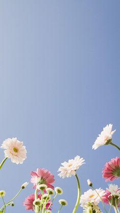 Wallpaper Flowers Iphone Black White 60 Best Ideas Source by Iphone Wallpaper Black, Black And White Wallpaper, Trendy Wallpaper, Flower Wallpaper, Wallpaper Samsung, Black White, Paper Flower Patterns, Paper Flowers, Flower Backgrounds