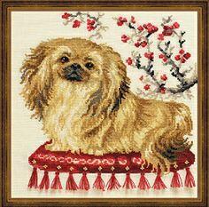 Gorgeous little Pekingese cross stitch