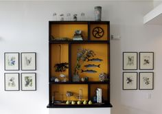 "Boutique Hotel Design, Lobby ""cabinet of curiosities""."